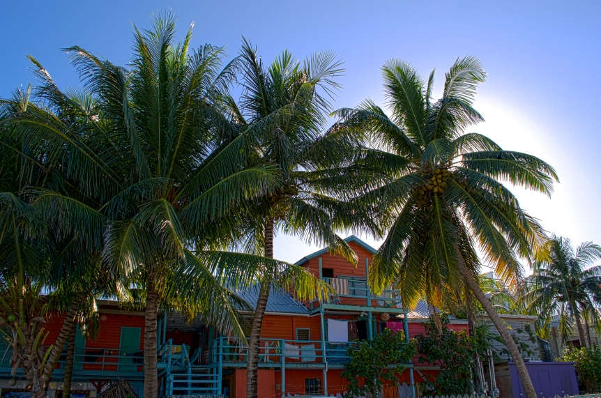 belize hostel