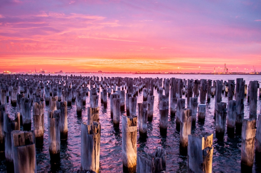 Photo Friday – Princes Pier Posts